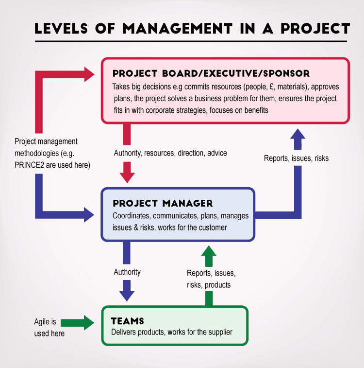 management levels in a project
